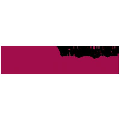 logo-berlingske-business